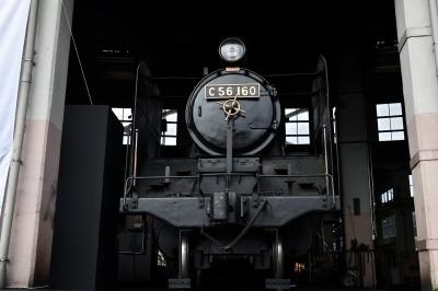190316010